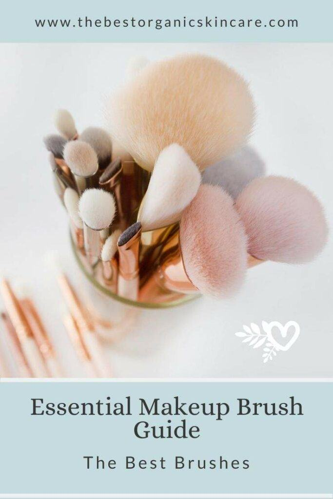 essentail makeup brush guide - the best brushes