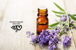 best essential oils for skincare