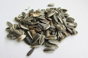 sunflower seeds vitamin E food