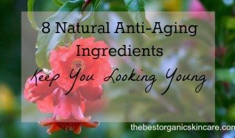 8 Natural Anti-Aging Ingredients – Keep You Looking Young