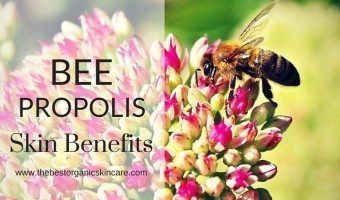 bee propolis skin care benefits