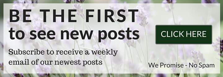 Be the First to see new Posts_
