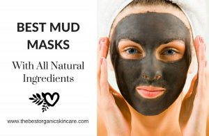 best mud masks with natural ingredients