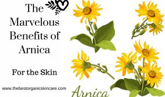 The Marvelous Benefits of Arnica for the Skin