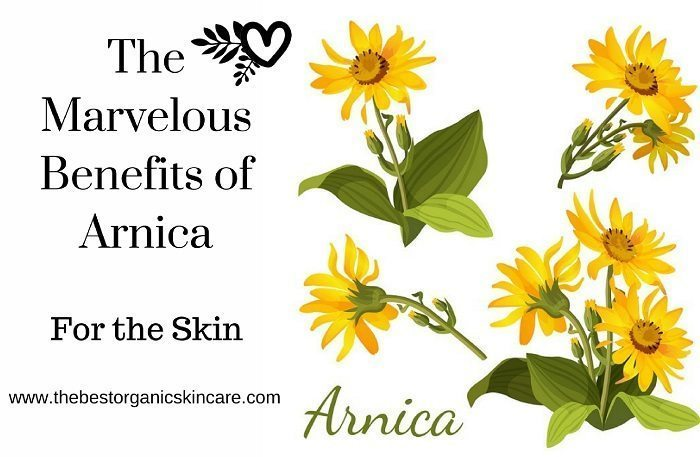 arnica benefits for the skin