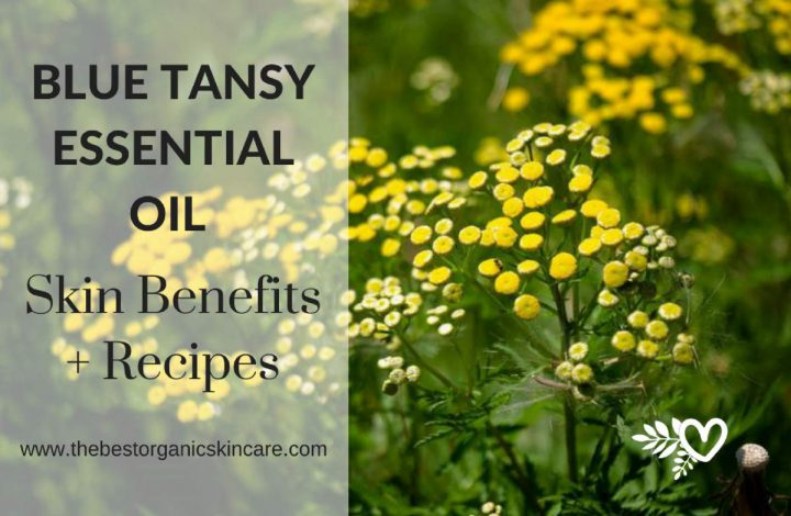Blue Tansy Essential Oil Skin Benefits + Recipes