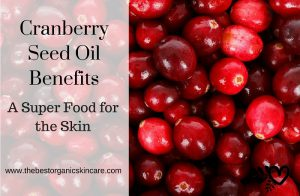 benefits of cranberry seed oil