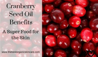 Cranberry Seed Oil Benefits for the Skin.