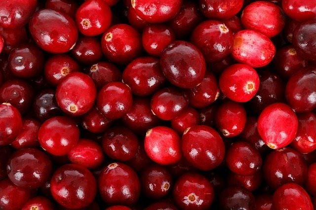 cranberry seed oil skin benefits