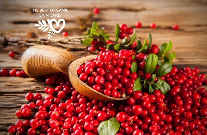 skin benefits of cranberry seed oil