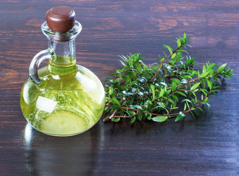best face oils for acne - myrtle
