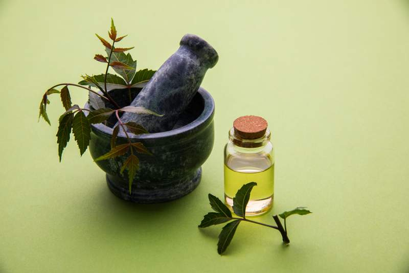neem seed oil for acne