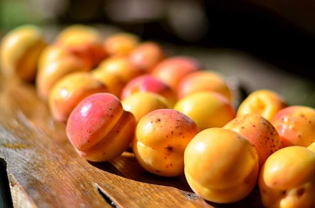 apricot benefits for the skin