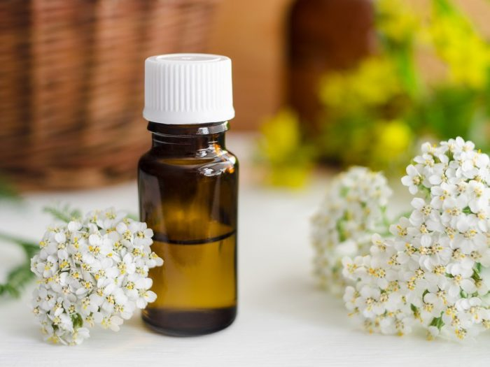 essential oils for chapped skin - yarrow