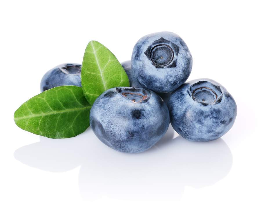 blueberry enzymes for the skin