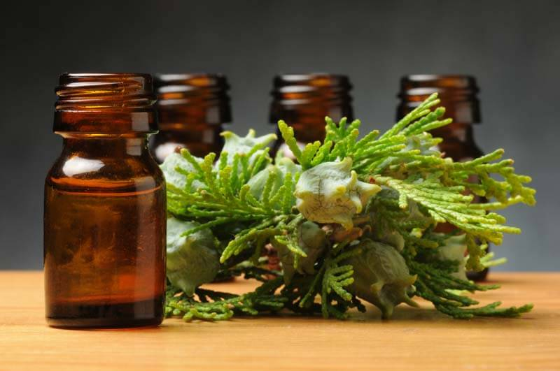 essential oils for poison ivy - cypress oil