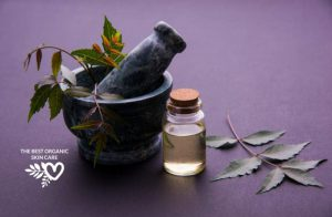 70 Non-Comedogenic Facial Oils For Clear Skin | TBOSC