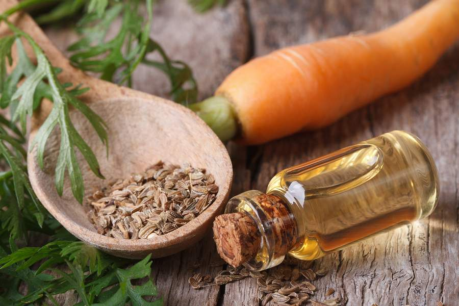 carrot seed oil benefits to the skin