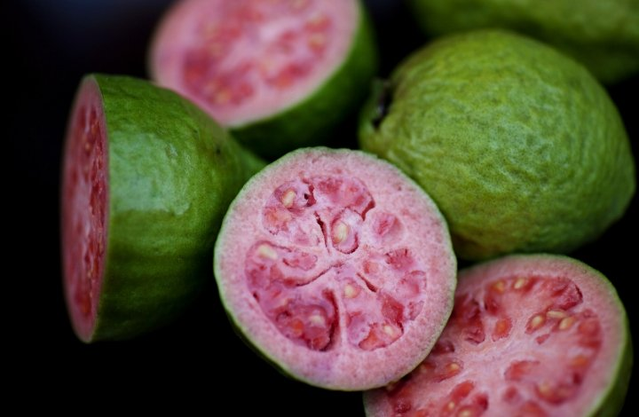 guava seed
