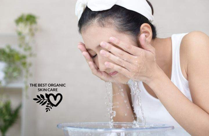 best organic face cleansers for dry skin