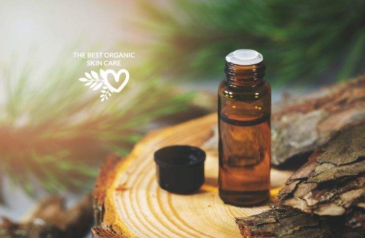 Pine Bark Extract Benefits For The Skin